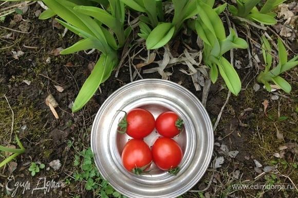 Взять хорошие помидорки черри, нарезать кружочками.