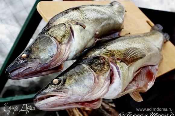 Вот такие рыбки водятся в нашем пруду и даже иногда ловятся. Ну и что, что лед еще стоит и снег его покрывает по пояс. А рыбы свежей хочется, вот народ и сидит на льду, рыбу эту, значит, ловит. Вот они какие — зимние судаки.