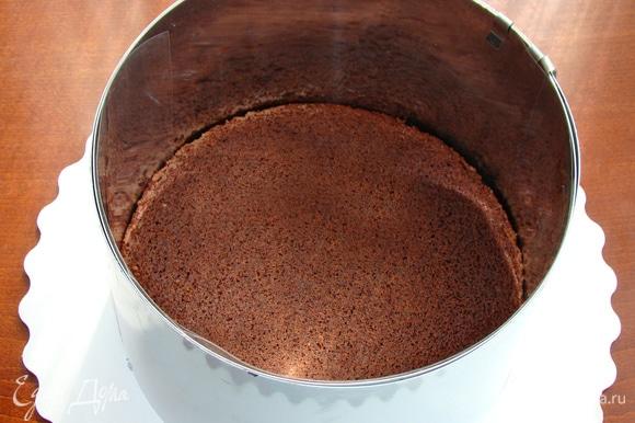 Бисквит установить на блюдо, поместить в кондитерское кольцо и проложить ацетатной пленкой. Бисквит получается в меру влажным, поэтому дополнительной пропитки не требуется.