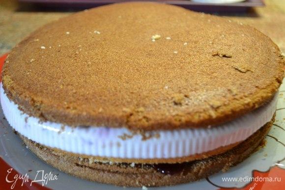 Четвертый слой — шоколадный бисквит.