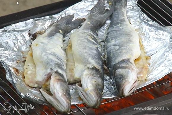 Рыбу снаружи и изнутри смазать специями и йогуртом, выложить на двойной слой пищевой фольги, поместить на гриль и пожарить.