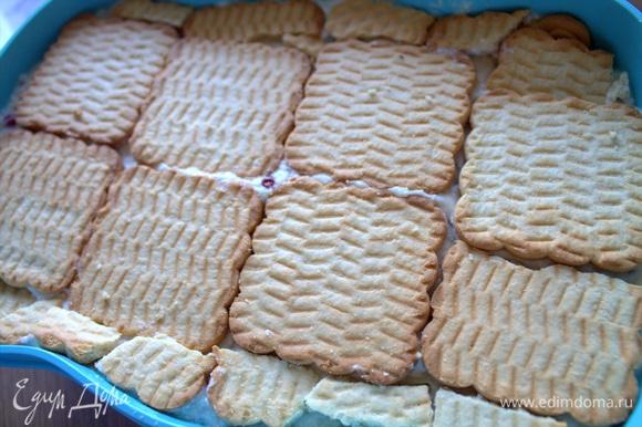 Сверху выложить слой из печенья. Убираем на ночь в холодильник. Печенье станет мягким.
