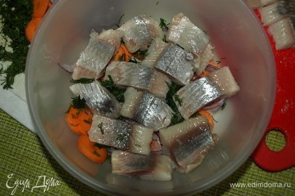 Сверху кладем сельдь. Далее — морковь, лук и зелень. Делаем так, пока все не будет отправлено в емкость.
