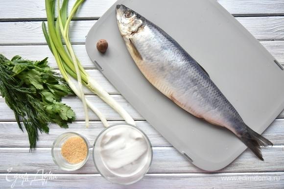 Подготовить необходимые продукты: слабосоленую сельдь, зелень, мускатный орех, желатин. По желанию в закуску можно добавить свежий огурец.