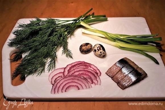 На тарелку положите несколько кусочков сельди, немного красного лука, одно перепелиное яйцо. Для украшения — измельченный укроп и зеленый лук.