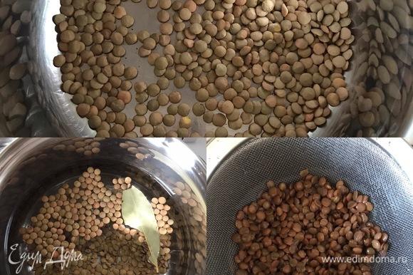 Чечевицу залить водой, добавить масло, лавровый лист, немного соли и отварить до готовности. Готовую чечевицу промыть и дать воде полностью стечь.