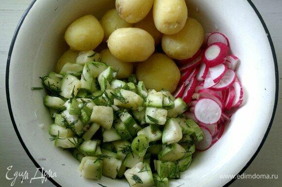 В пакете с кабачками сделать зубочисткой дырочку и выпустить образовавшийся сок. В миске соединить картофель, редис, малосольные кабачки.