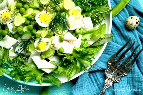 Выложить на блюдо салатный микс, огурец, сельдерей, кальмар и посыпать горошком.