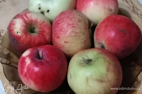 Яблоки моем, обсушиваем.