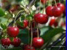 Варенье черешневое без косточек