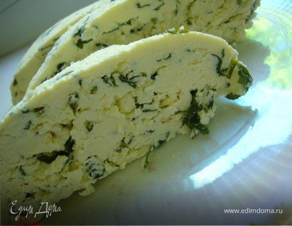 Сыр с зеленью.(Home-made)