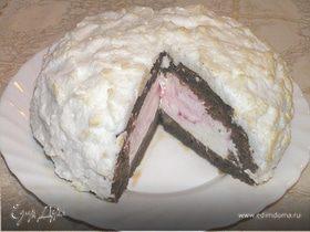 Вишневый торт-мороженое с шоколадным бисквитом (Tescoma)