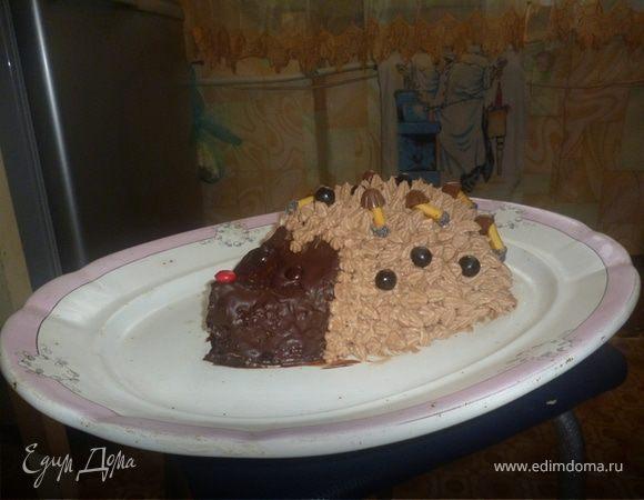 Торт-Ёжик