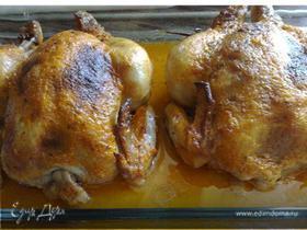 Цыплята, фаршированные сухарями и зеленью