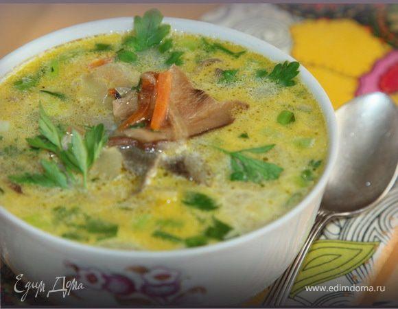 Рецепт приготовления супа из белых грибов от высоцкой авто тюнинг для megane 2