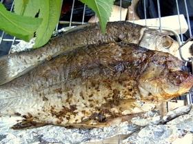 Рыбка-гриль