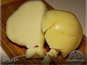 Сыр Качокавалло из молока англо-нубийских коз