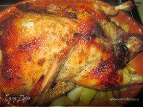 Утка с яблоками и смородиновым соусом