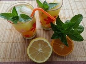 Мятно-цитрусовый напиток «Освежающий»