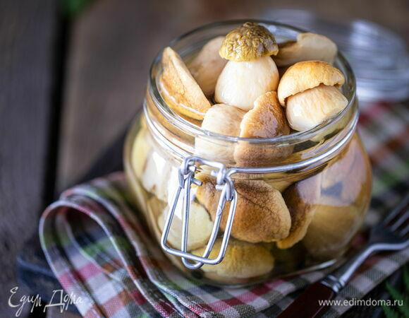 Рецепт засолки белых грибов